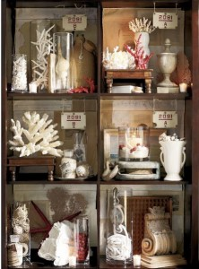 Cabinet display of collection with balance and viewing